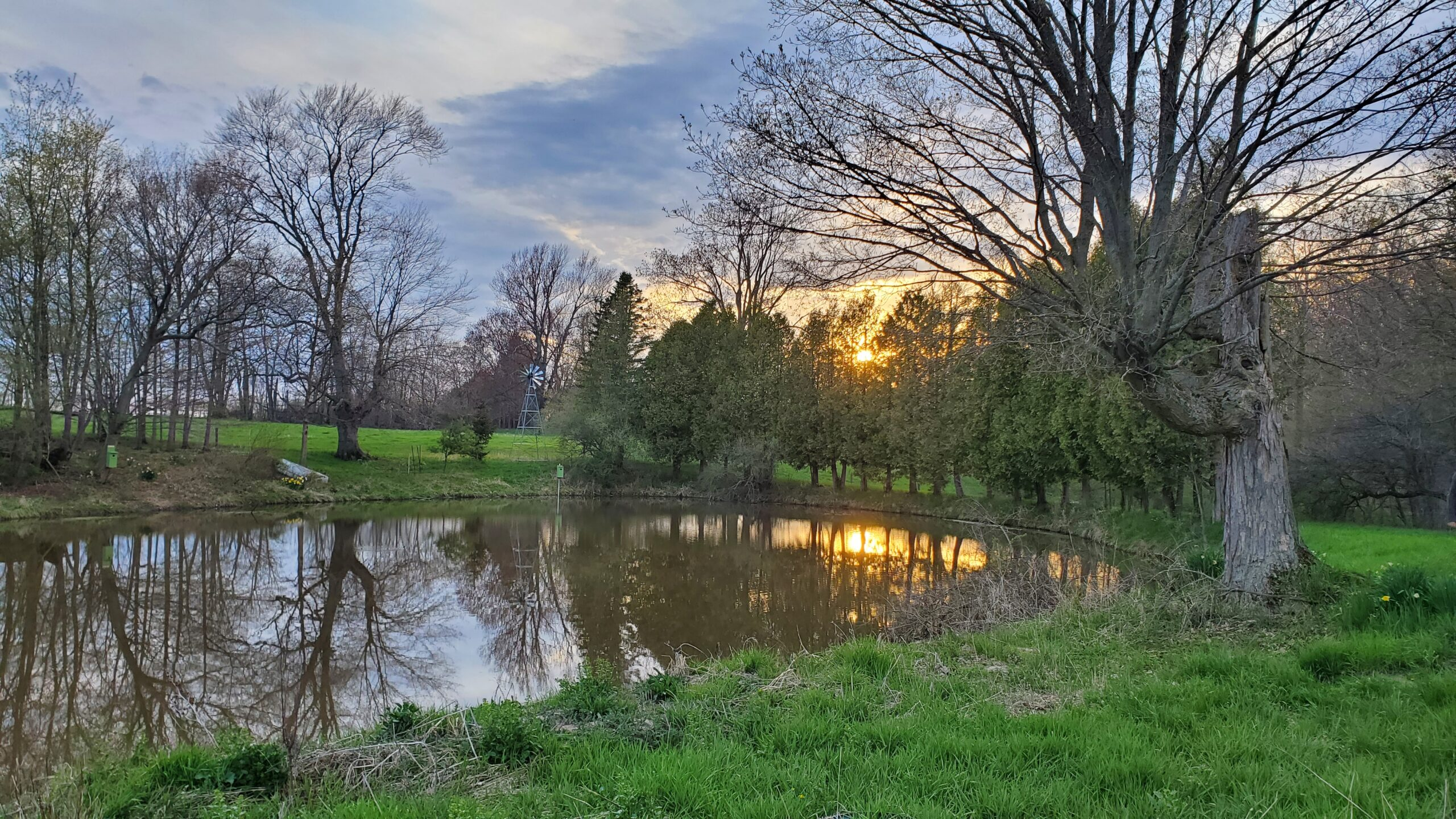 Voogt Farms - Sunset at the pond